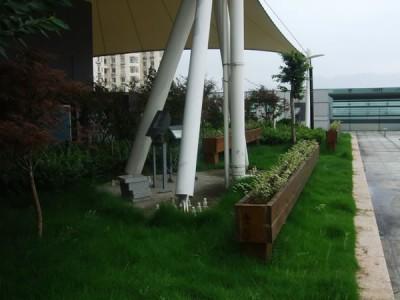 温州工人文化宫室外景观绿化工程