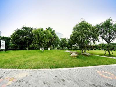 温州市主要道路(迎检)沿路绿化景观-瓯海大道与温瑞大道交叉口四个角绿化工程